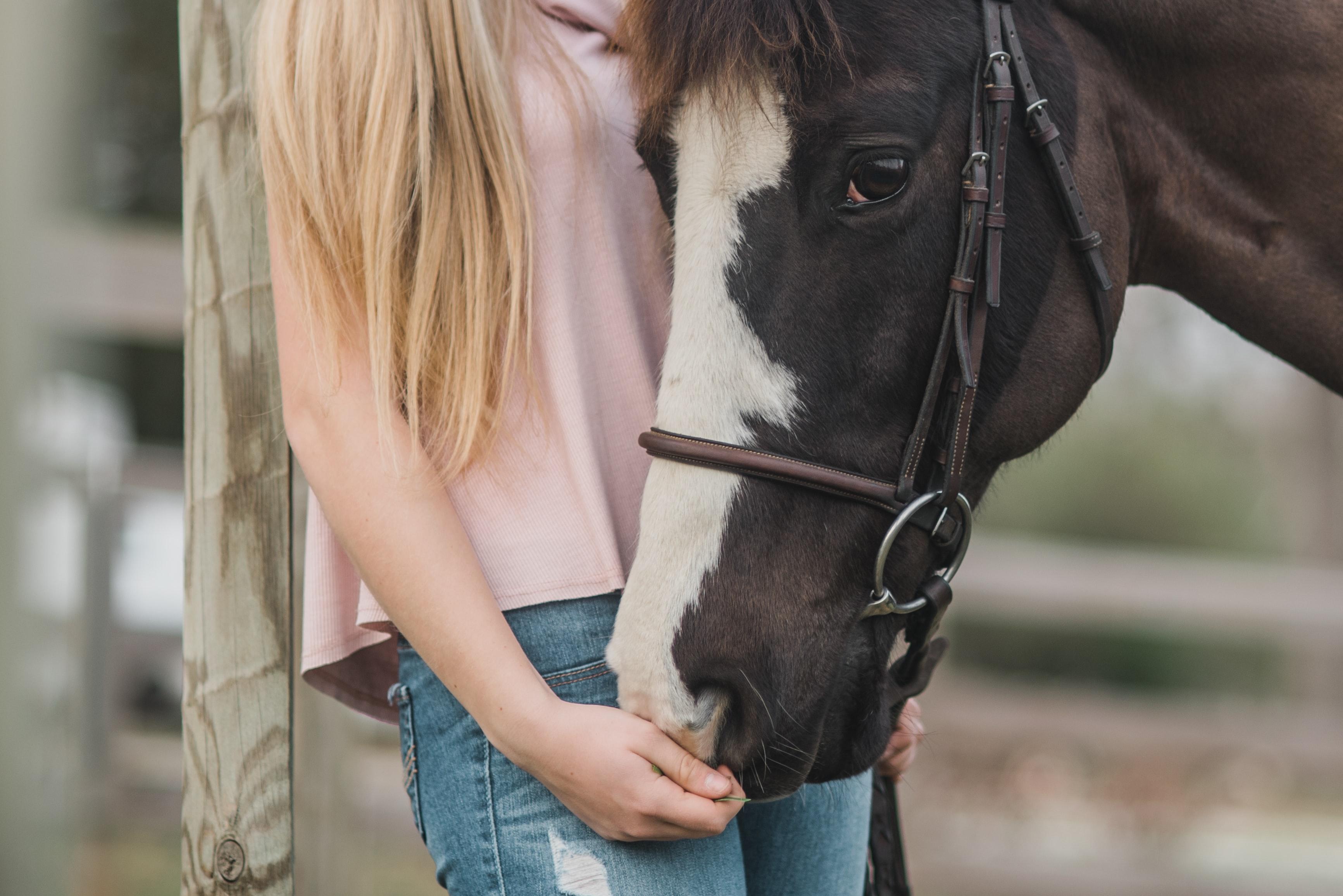 kirsten lachance d3p7NVgzGP4 unsplash - Tag på efterskole med hestelinje