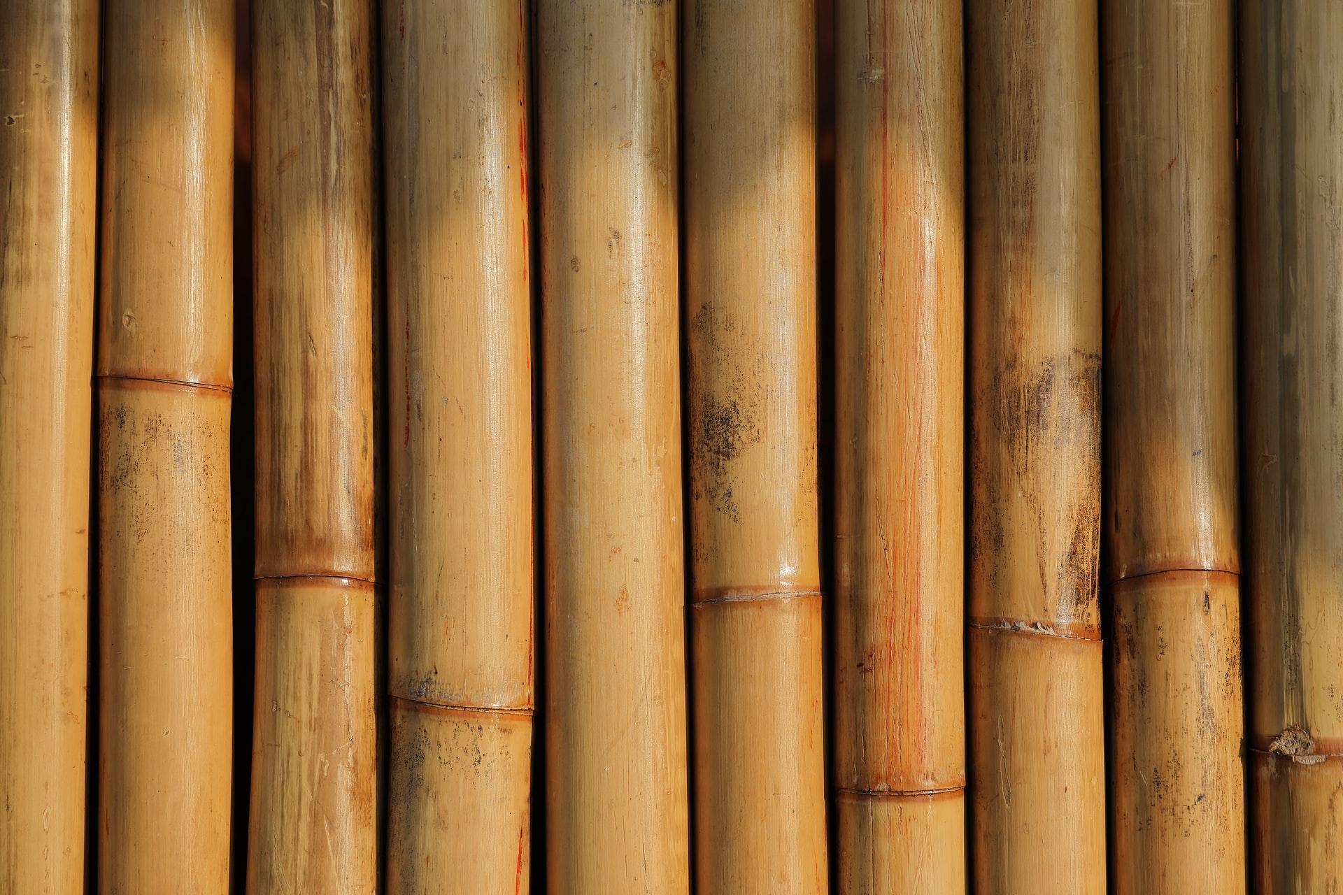 maksim shutov  YZmLkUg EI unsplash - Har du set de unikke bambusborde til terrassen?