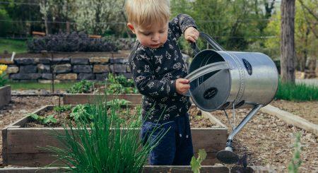 Gør havearbejdet nemmere med højbede