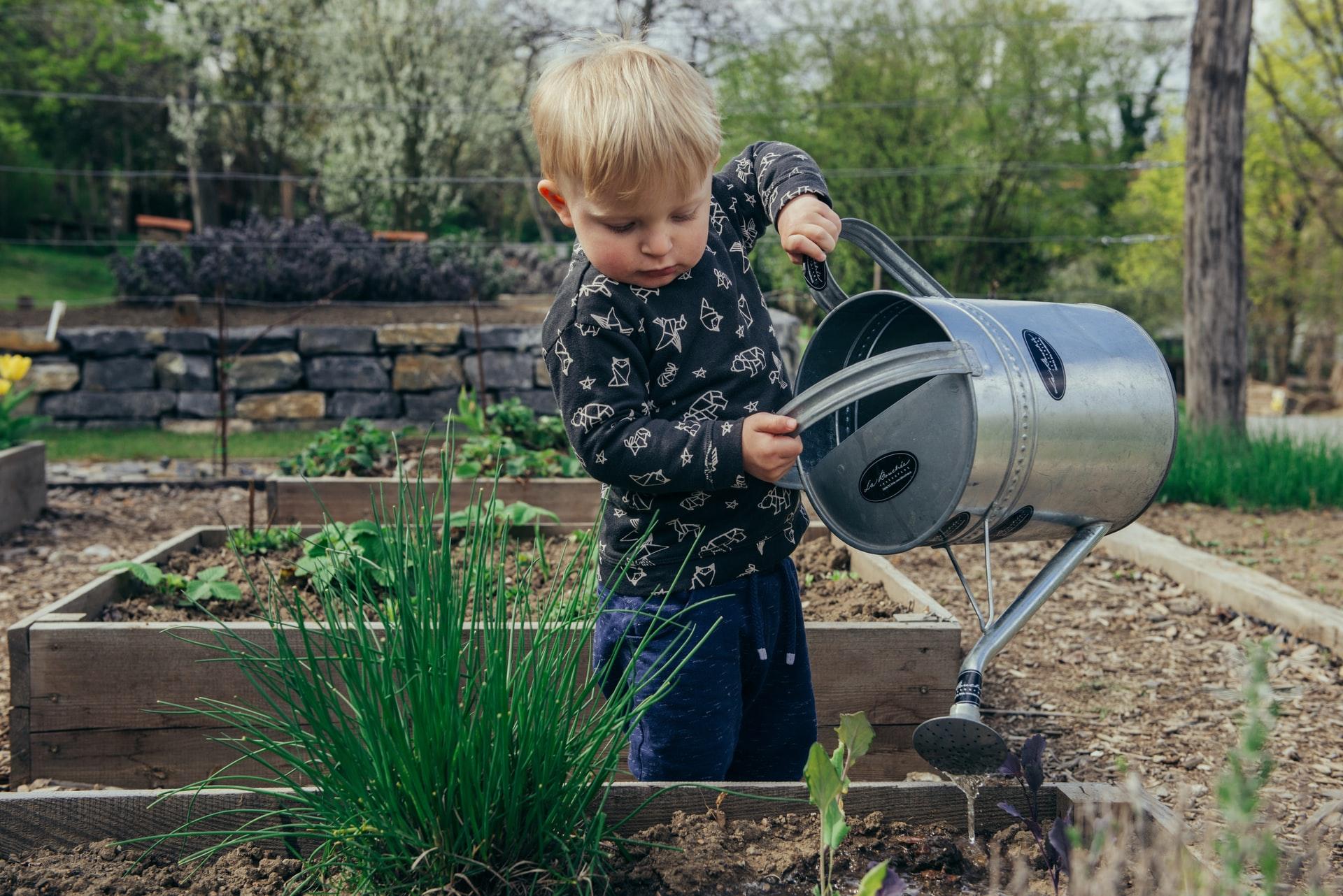 filip urban ffJ8Qa0VQU0 unsplash - Gør havearbejdet nemmere med højbede